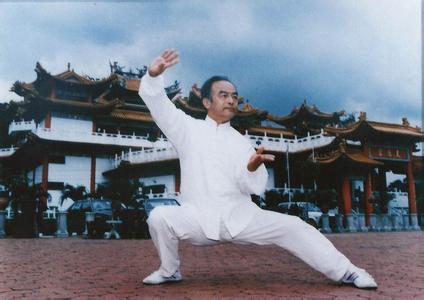 太极拳的流派传承和发展