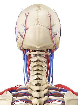 """X线拍片提示""""颈椎生理曲度变直""""..."""